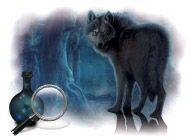 Detaily hry Prokletí vlkodlaků