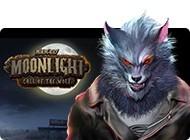 Details über das Spiel Murder by Moonlight: Call of the Wolf